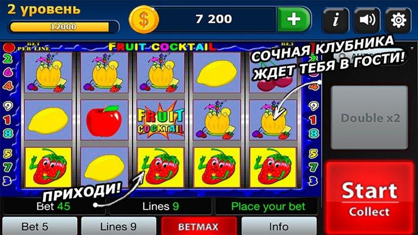 Игровой автомат wild turkey на redpingwin играть