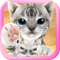 3d Cute Cat Live Wallpaper