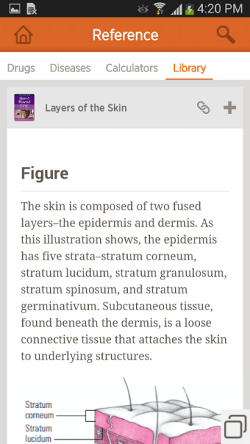 clinical guide to skin and wound care pdf