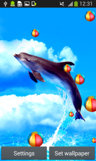 Dolphins Live Wallpapers screenshot 1