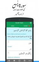 Surah Yasin Urdu Translation Screen