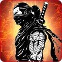 Ninja Warrior Shadow