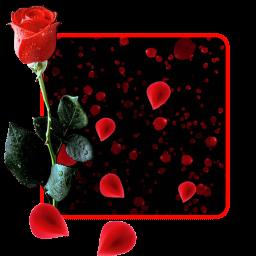 تحميل Apk لأندرويد آبتويد وردة حمراء باقة Hd خلفيات1 1 8