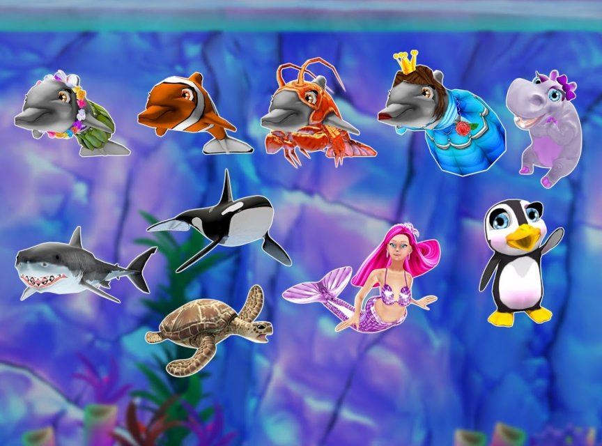 my dolphin show download free