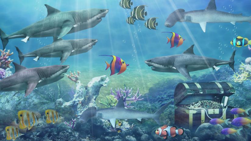 Shark Aquarium Live Wallpaper Screenshot 3