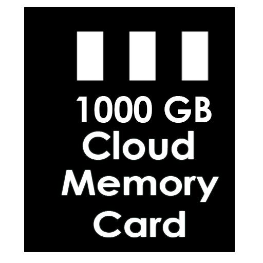 1000 GB Cloud Memory Card