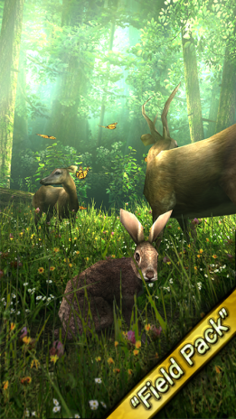 forest hd 1 6 1 download apk for android aptoide