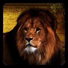 Löwen Live Wallpaper 7 5 Laden Sie Apk Für Android Herunter Aptoide