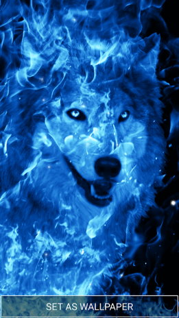 Ice Fire Wolf Wallpapers And Backgrounds Screenshot 5