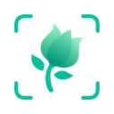 PictureThis растения признать