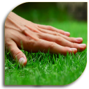 Lawn - Garden Care (Guide)