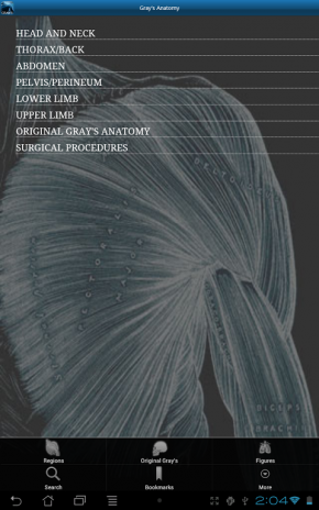 Gray S Anatomy 2011 Screenshot 3