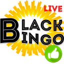Bingo Live on Money 25$ Free multiplay game Online