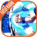 Saiyan Wariors Fighter : Budokai