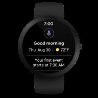 Wear OS by Google Smartwatch (was Android Wear) screenshot 12