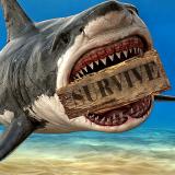 Raft Survival Icon