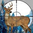 La chasse au chevreuil 2015