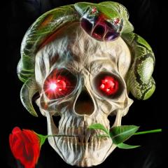 Cranio Live Wallpaper 100 Scarica Apk Per Android Aptoide