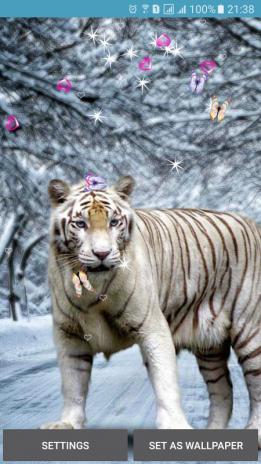 Bengal Tiger Live Wallpaper Screenshot 1