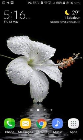 Dewy Flower Live Wallpaper Screenshot 1 2