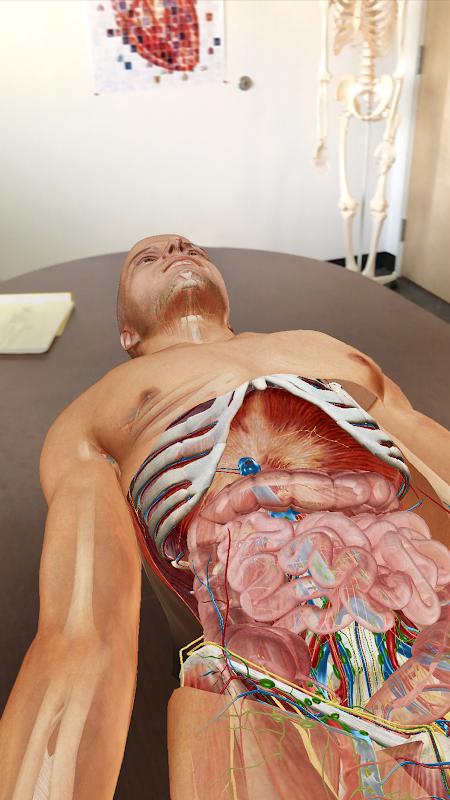 Human Anatomy Atlas 2020:Complete 3D Human Body screenshot 1