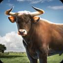 Bull Simulator