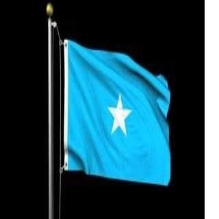 Somali All News Screenshot 5