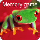 Colorful Frogs Memory Game