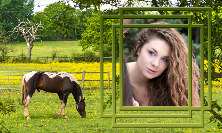 marcos de la foto del caballo 1.3 Descargar APK para Android - Aptoide