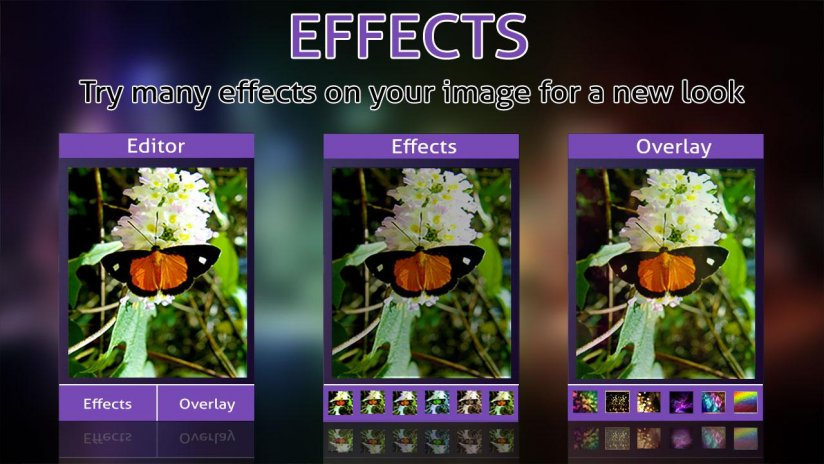 Butterfly Photo Frames Editor 1 9 Download APK for Android