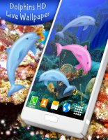 Dolphins Live Wallpaper 🐬 Ocean HD Wallpapers Screen
