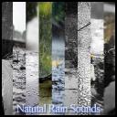 Natural Rain Sounds