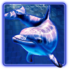 Dolphins pearl gaminator