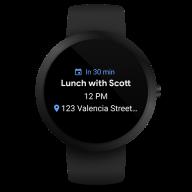 Wear OS by Google Smartwatch (was Android Wear) screenshot 14