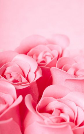 Pink rose live wallpaper 160 download apk for android aptoide pink rose live wallpaper screenshot 5 altavistaventures Gallery