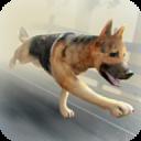 My Zombie Dog Free Simulator