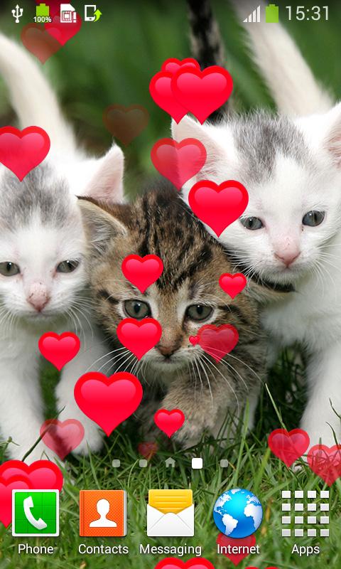 kucing lucu hidup wallpaper 1.6 Unduh APK untuk Android