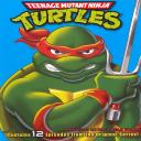 Ninja Turtles Volume 1