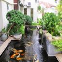Attractive fish pond design