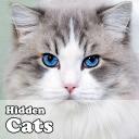 Hidden Object Games - Cats