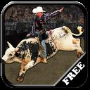 Bull Riding Challenge 2