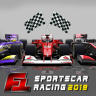 Formula Sports Car Racing - Championship 2018 Icon