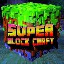Super Block Craft & Master World 3D