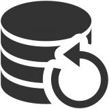 Application Backup Pro Icon