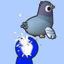 Pigeon Poops