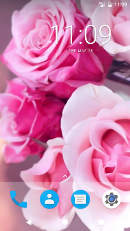 Pink Rose Hd Wallpapers 1 0 ড উনল ড কর ন