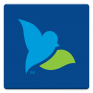 bluebird by american express icon