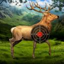 Deer Target Shooting