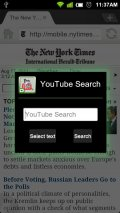 Dolphin Youtube Search Screenshot