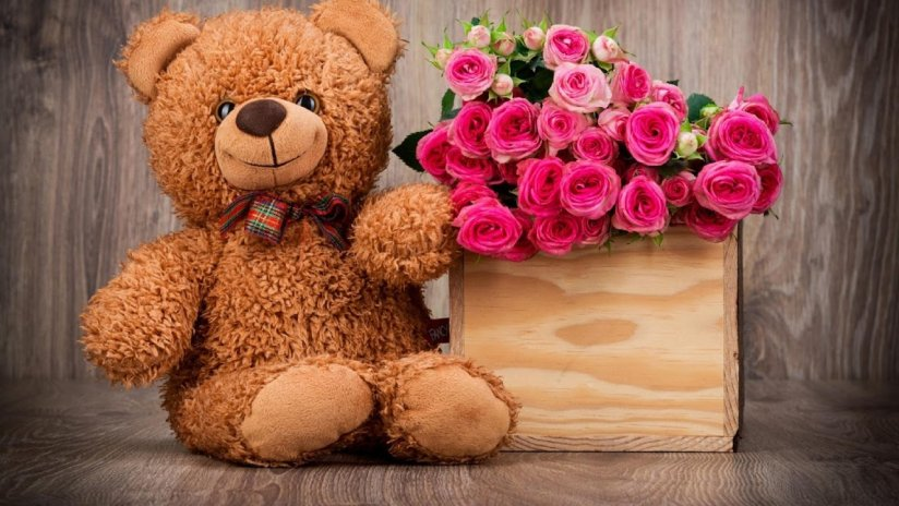 Teddy Bear Live Wallpaper 1 14 Download Apk For Android Aptoide